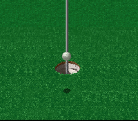 HAL's Hole in One Golf 5