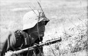 Bundesarchiv Bild 101I-732-0123-15, Russland, Soldat der Div.»Großdeutschland«