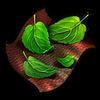 Healing Herbs.png