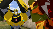 Scorponok with Bumblebee
