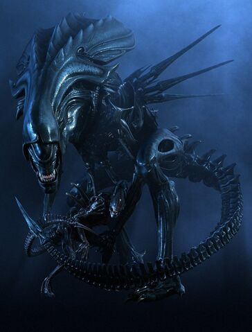 File:AlienQueen.jpg