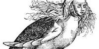 Harpies (mythology)
