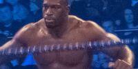 Titus O'neil