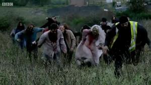 Zombies - ISAZA