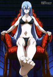 Esdeath Bikini Chair
