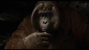 """King Louie"" Clip - Disney's The Jungle Book"