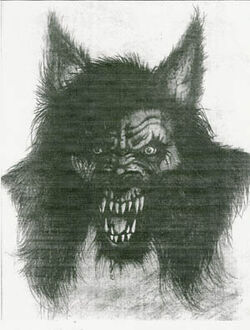 Michigan Dogman illustration
