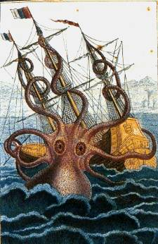 Colossal octopus by Pierre Denys de Montfort