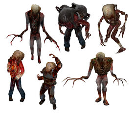 Zombies(HL)