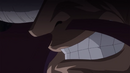 Kaido's grin
