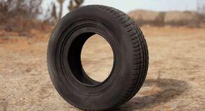 Robert the Tire