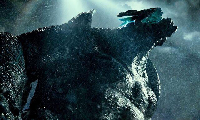 File:Leatherback.jpg