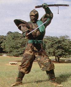 File:Dark Warrior.jpg