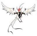 Fei bird