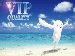 VIP quality