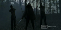 Michonne (TV Series) Gallery
