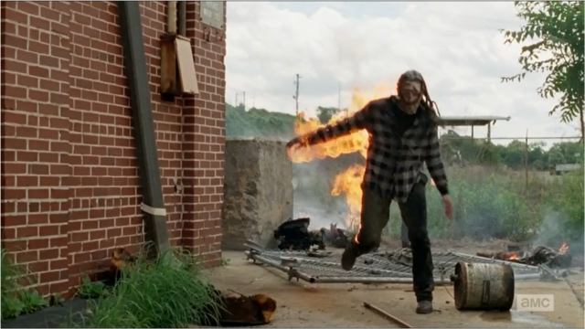 File:TWD Burning Walker.png