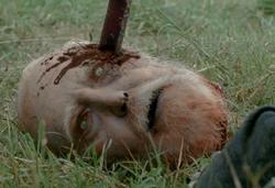 Hershel's Head