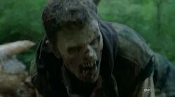 Daryl walker