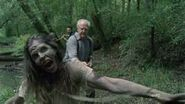 Hershel, walker louise