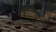 LRA Duckpocalypse 3