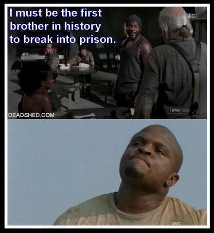 File:The Walking Dead Season 3 Meme Tyreese History TDog DeadShed.jpg