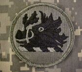Georgia-national-guard-acu-patch