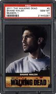 Trading Cards Season One - 5 Shane Walsh