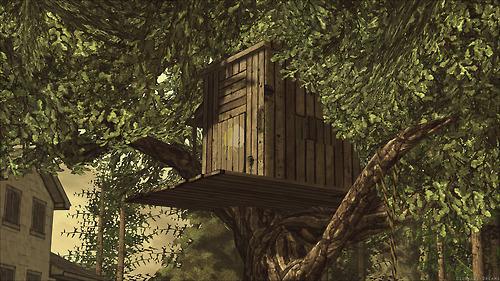 File:Clem's Treehouse.jpg