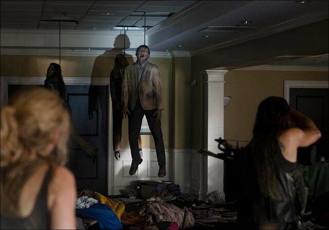 File:Hanging walkers in Still!.jpg