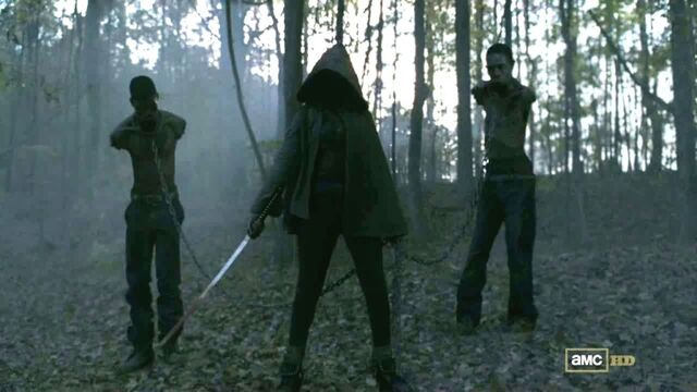 File:Michonne-Walking-Dead-Danai-Gurira-1024x576.jpg