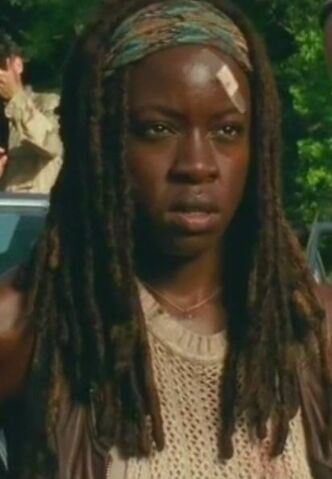 File:Michonne Too Far Gone 4.JPG