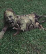 Hannah zombie