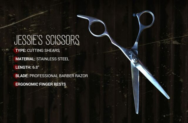 File:Jessie's Scissors.JPG