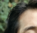 Glenn Rhee (TV Series)