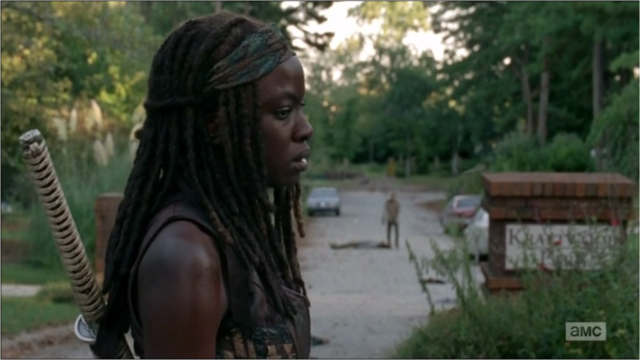 File:5x09 Michonne Overwhelmed.png