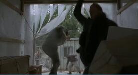 Carl kills George