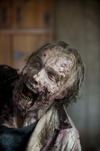 File:Walking-Dead-309-14.jpg