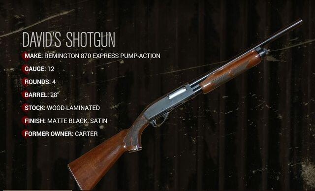 File:David's Shotgun.JPG