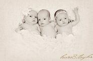 Case Triplets