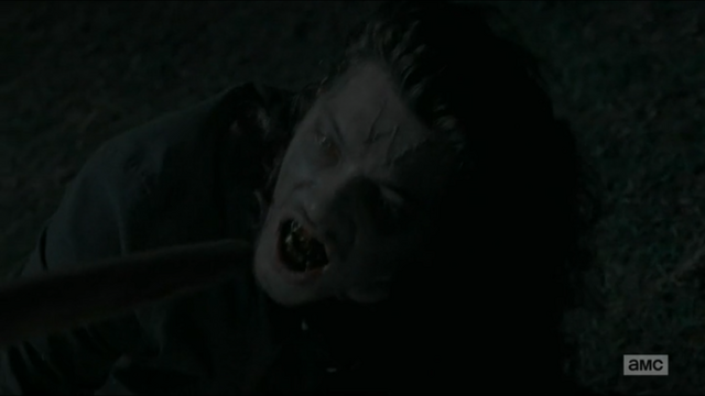 File:The wolf as a walker.png