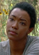 Sasha Williams Season 7