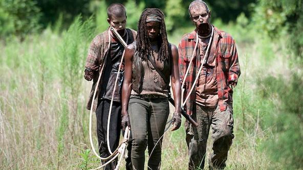 File:Michonne'safterpets.jpg