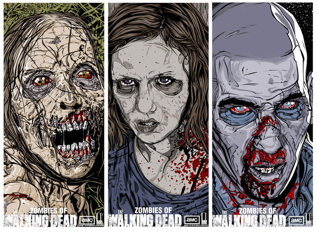 File:Zombies of The Walking Dead Series 2 Set.jpg