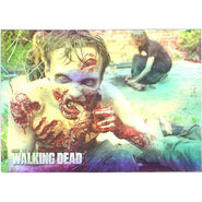 The Walking Dead - Sticker (Season 2) - S5 (Foil Version)