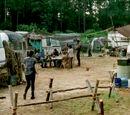 Caesar Martinez's Camp