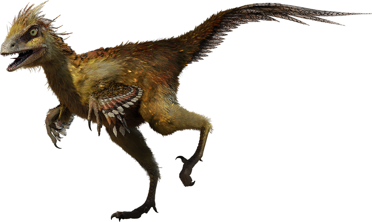 Hesperonychus | Walking With Wikis | Fandom powered by Wikia
