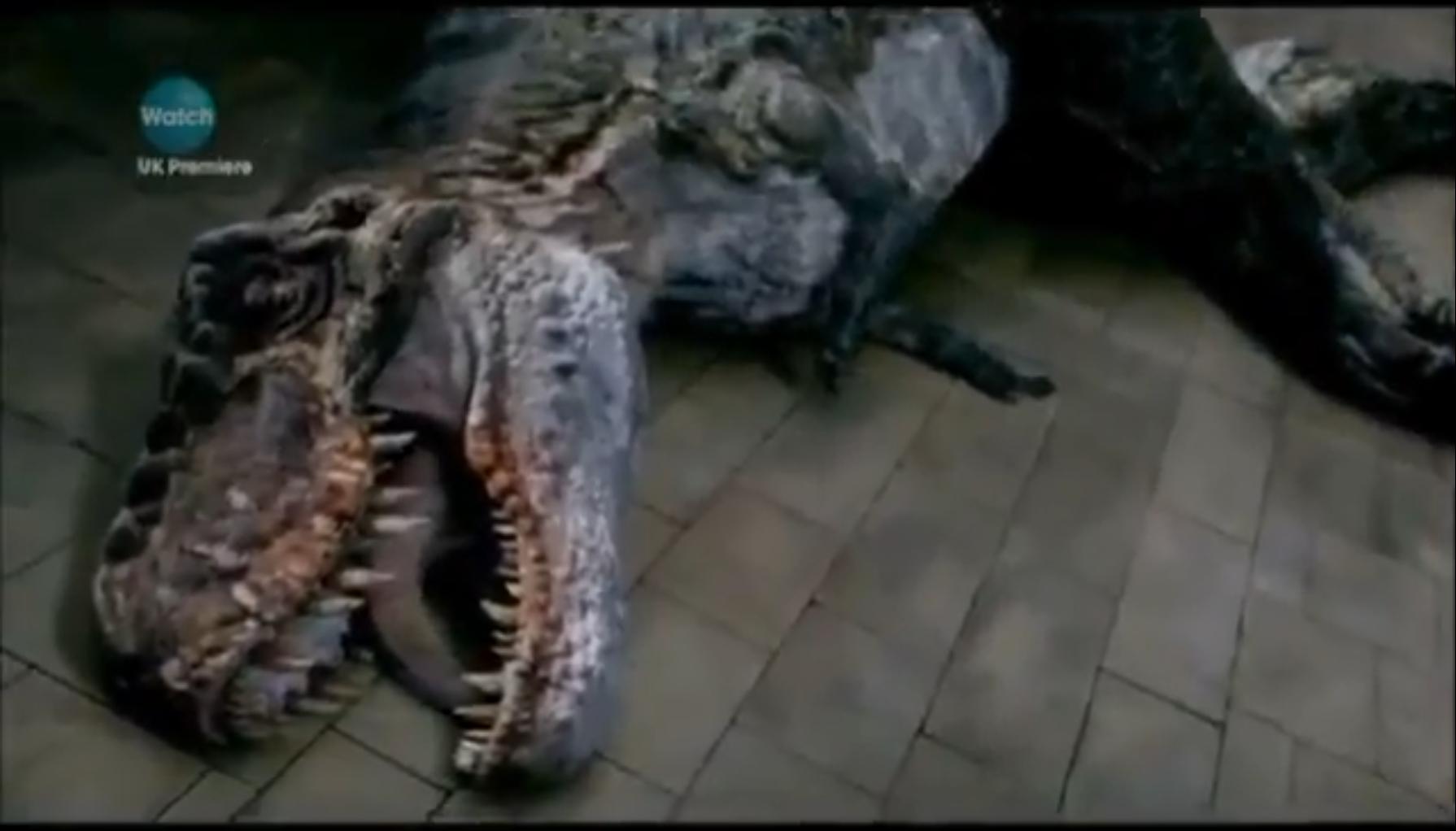 Tyrannosaurus rex | Walking with Dinosaurs Wiki | FANDOM ...