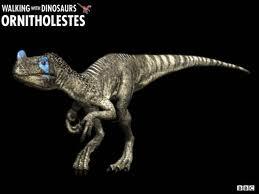 Ornitholesteswwd