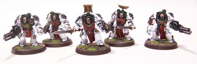 File:Elite Cadre Squad 1.jpg